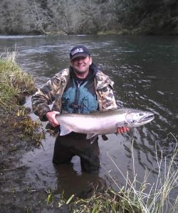 Big Steelhead  1 Web